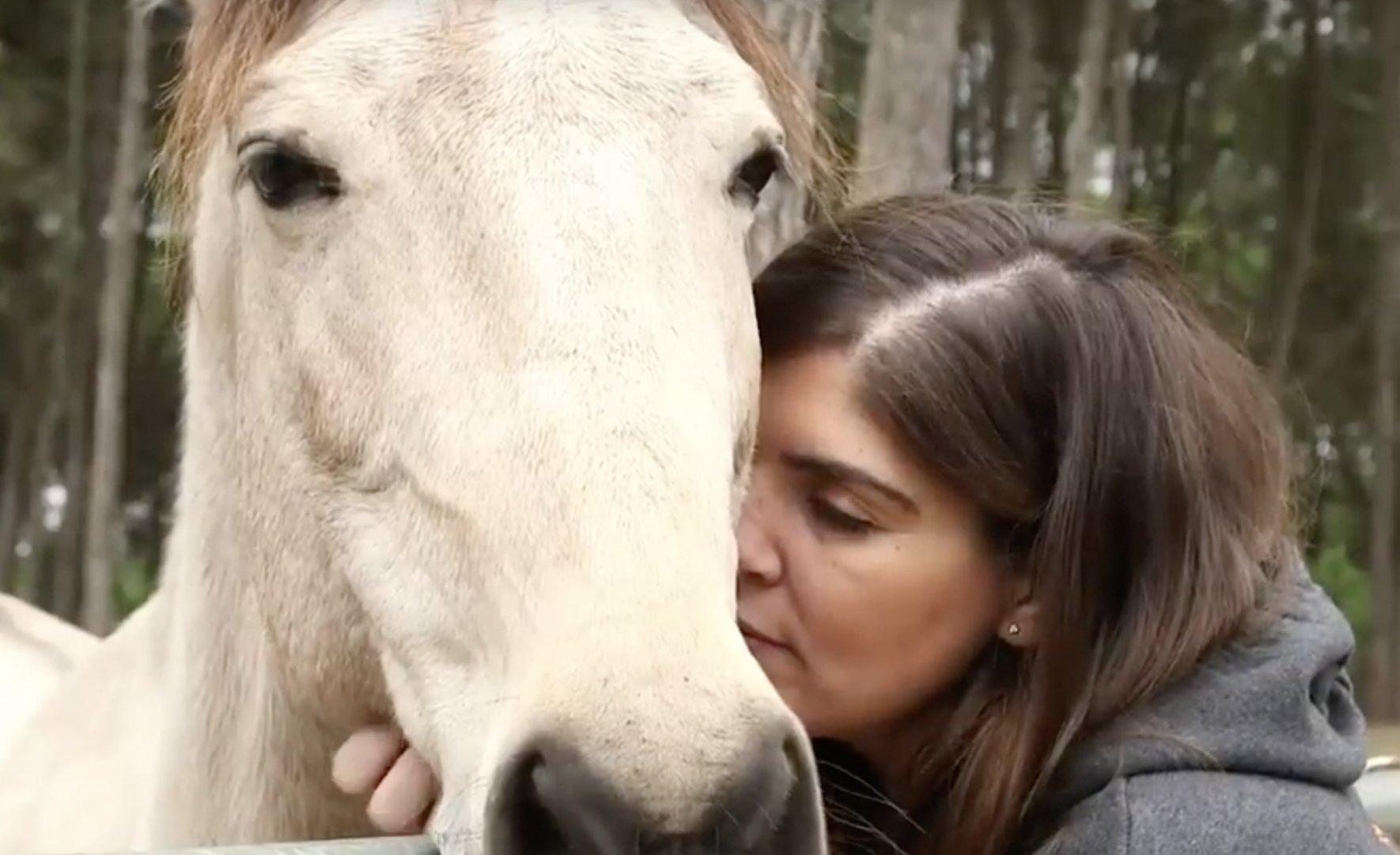 12º Aniversário da SOS Animal